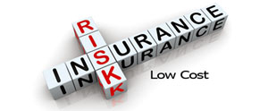 Liability auto and home insurance